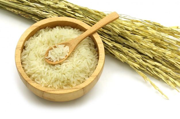 Riso del gelsomino isolato in una ciotola di legno e cucchiaio con l'orecchio di riso su bianco