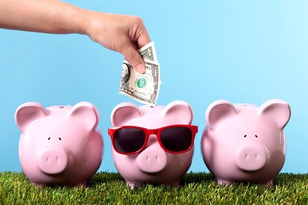 Risparmio per le vacanze o la pensione