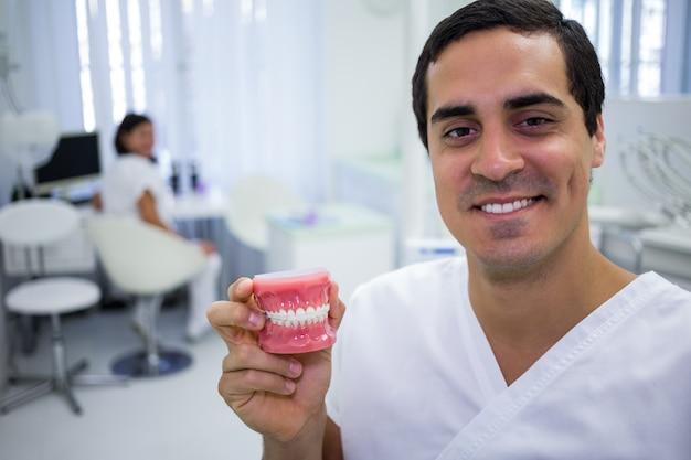 Ritratto del dentista che tiene un insieme delle protesi dentarie