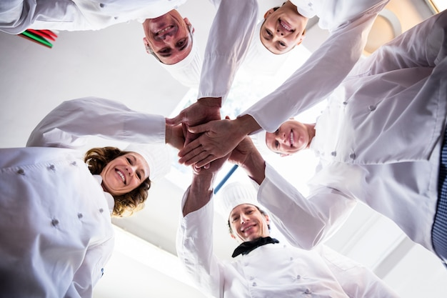 Ritratto del gruppo dei cuochi unici che un le mani e che incoraggiano