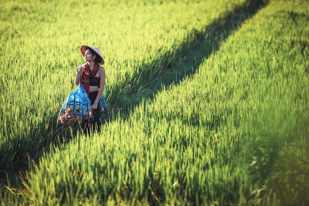 Ritratto dell'agricoltore tailandese della giovane donna, campagna della tailandia