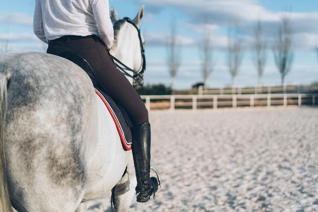 Ritratto di fantino donna cavallo indietro