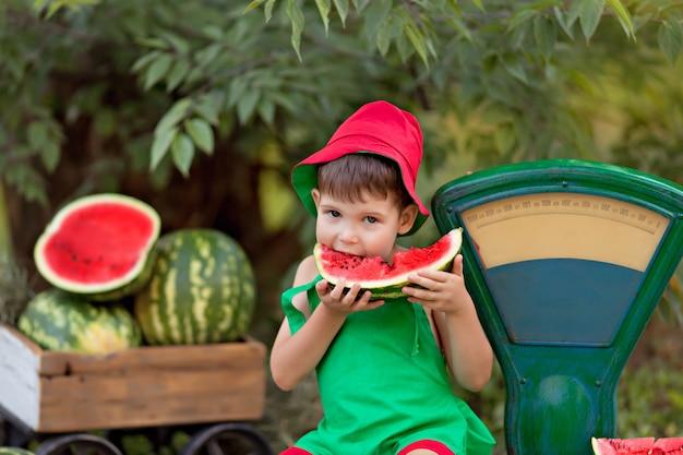 Ritratto di felice piccolo bambino ragazzo all'aperto mangiando angurie, raccolta