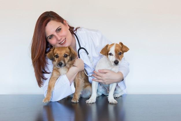 Ritratto di giovane donna veterinaria che esamina due piccoli cani svegli usando lo stetoscopio, isolato su fondo bianco. in casa