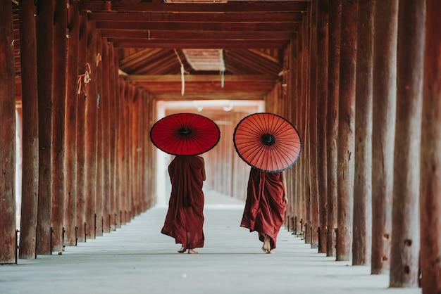 Ritratto di piccoli monaci buddisti locali.