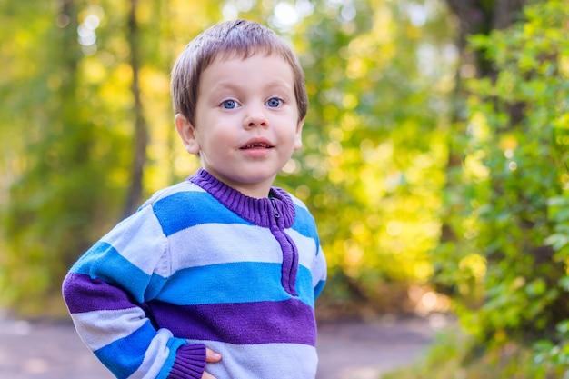 Ritratto di un ragazzo in un maglione. ritratto del ragazzino bel bambino.