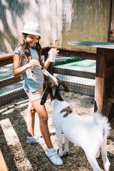 Ritratto di una ragazza carina che alimenta il cibo alla capra nella fattoria