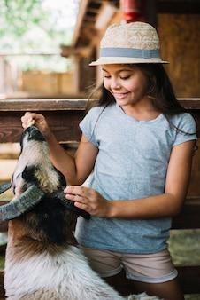 Ritratto di una ragazza che alimenta il cibo alle pecore nel fienile