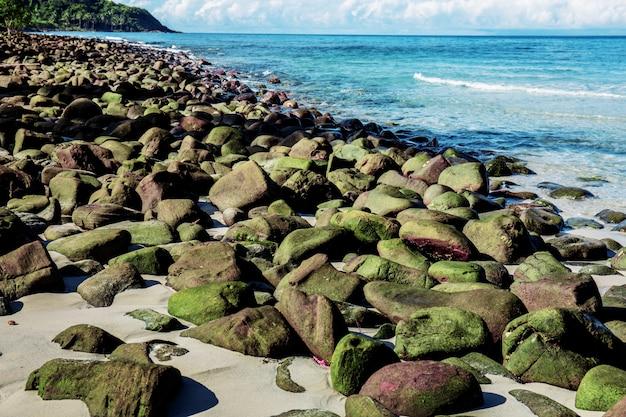 Rocce di verde sulla spiaggia.