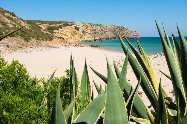 Rocce sulla spiaggia sabbiosa di praia do amado, portogallo