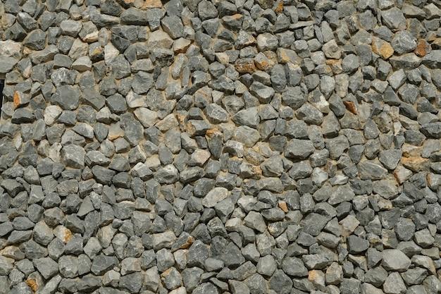 Roccia del sedimento con i seashells fossilizzati sul primo piano della spiaggia