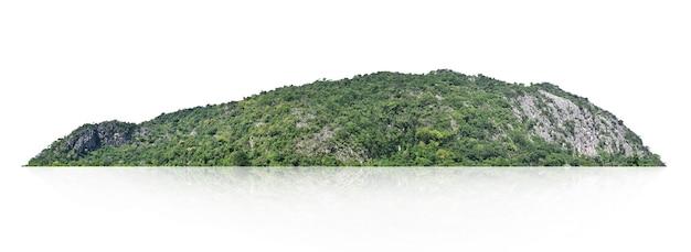 Rock mountain con foresta isolare su sfondo bianco