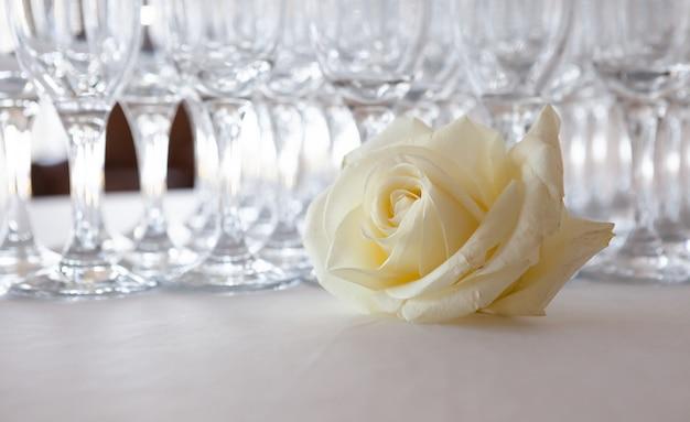 Rosa bianca sul tavolo, sullo sfondo bicchieri di champagne, evento di nozze