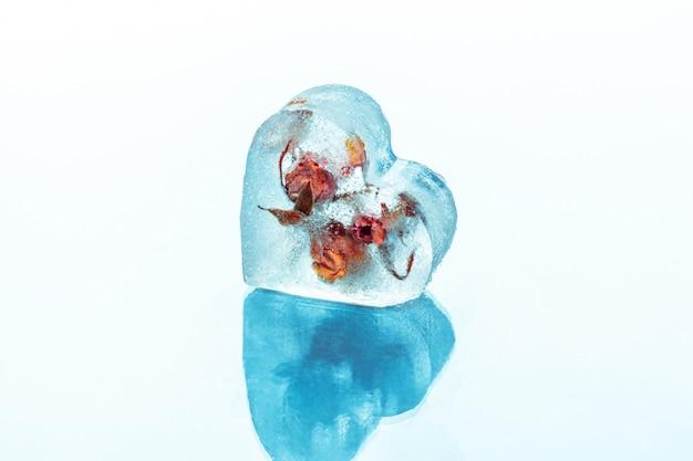 Rosa congelata in cubetto di ghiaccio
