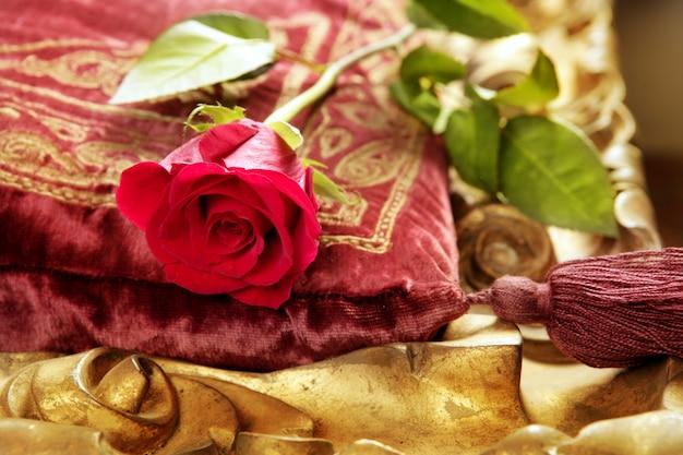 Rosa rossa classica sul cuscino vintage in velluto ricamato