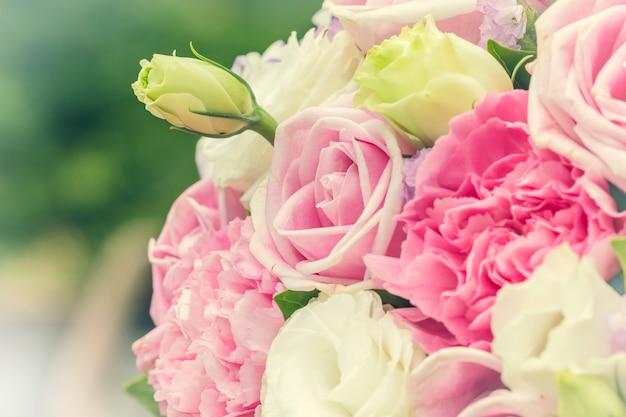 Rose multicolore colorate