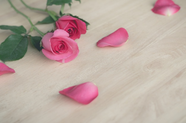 Rose rosa nel giorno di san valentino, sfondo romantico (effetto vintage)