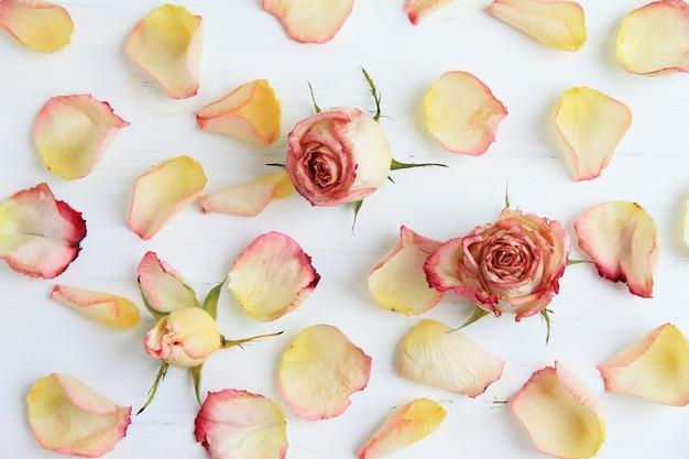 Rose rosa, petali di rosa su fondo di legno