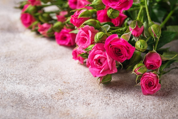 Rose rosa su sfondo chiaro
