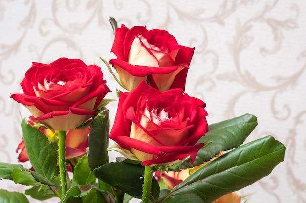 Rose rosse nella stanza su uno sfondo sfocato. fiori per saluti e decorazioni delle vacanze