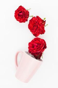 Rose rosse sopra la tazza di inclinazione rosa su sfondo bianco