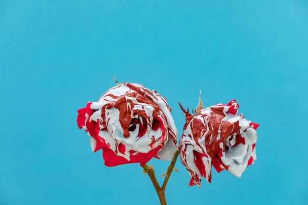Rose rosse sporchi di vernice