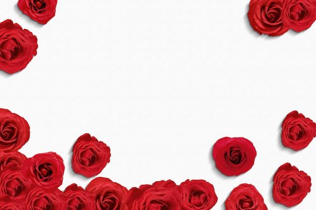 Rose rosse sul pavimento