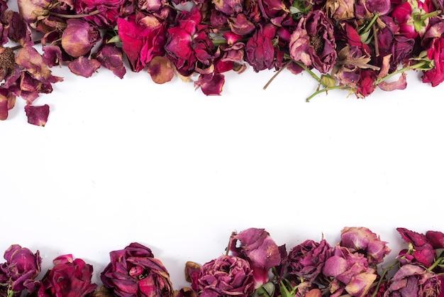 Rose sopra e sotto una cornice che lascia il bianco vuoto nel mezzo