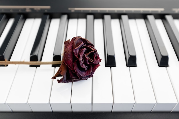 Rose su un pianoforte