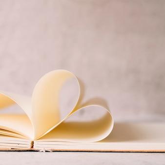 Rotoli di carta nel notebook