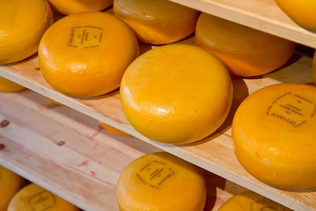 Round di formaggio - o ruote in un negozio in olanda