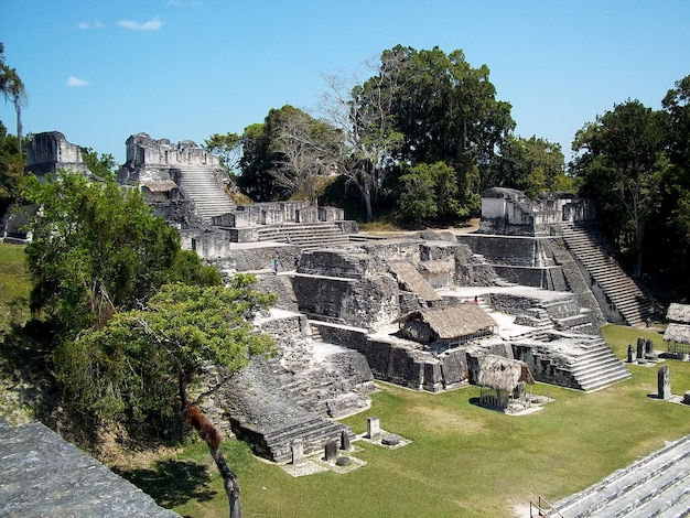 Rovine antiche a tikal, guatemala