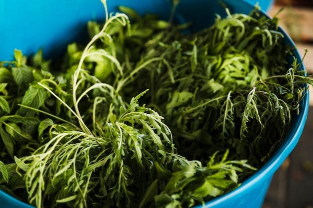 Rucola fresca verde in secchio blu al mercato