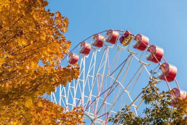 Ruota panoramica nel parco di autunno