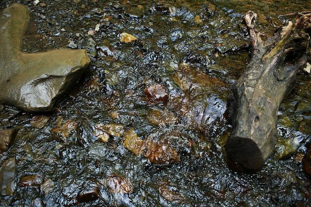 Ruscello di montagna che scorre con acqua trasparente e pietre sul fondo