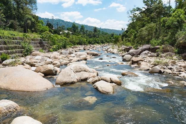 Ruscello di montagna che scorre con acqua trasparente e pietre