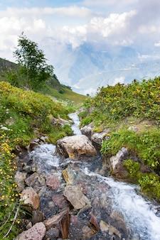 Ruscello di montagna selvaggio tra le pietre nel paesaggio della valle verde