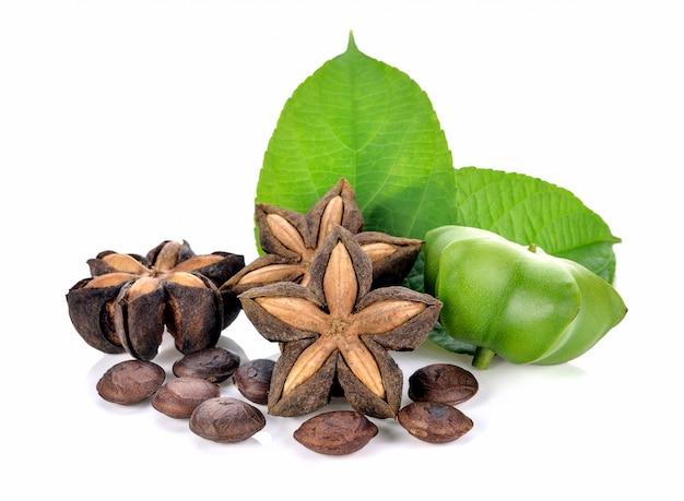 Sacha inchi su semi di capsule bianchi e freschi frutto di arachidi sacha-inchi