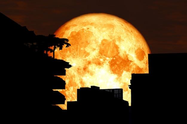 Sagoma della luna posteriore del sangue che costruisce sopra il cielo rosso dell'albero