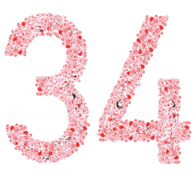Sakura flower numero 3 4