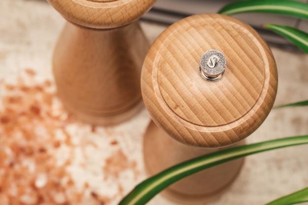 Sale e pepe di legno con sale himalayano, con pepe sparso intorno alla pianta verde in cucina