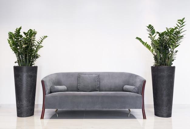 Salone interno con mobili, divano