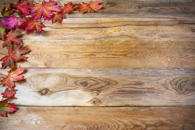 Saluto del ringraziamento con le foglie di acero di caduta su fondo di legno rustico