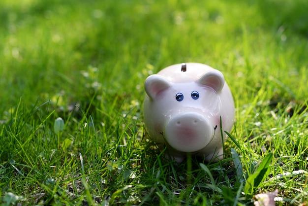 Salvadanaio rosa per ionnet e denaro sull'erba verde per salvare le finanze