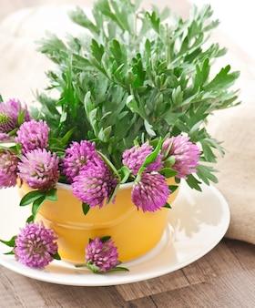 Salvia e trifoglio all'interno del vaso di fiori