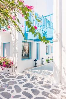 Santorini bouganville villaggio bianco bello