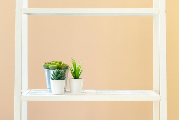 Scaffale per libri bianco con la pianta in vaso contro il beige
