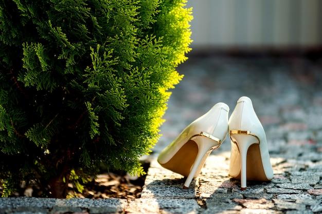 Scarpe da sposa vicino al cespuglio verde