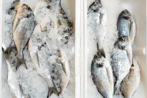 Scatola con pesce congelato su ghiaccio in alimentari