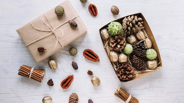 Scatole di cartone con coni e noci